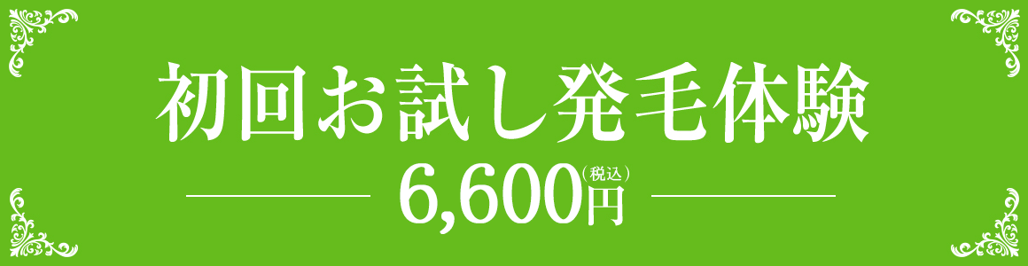 初回お試し発毛体験6,000円(税別)
